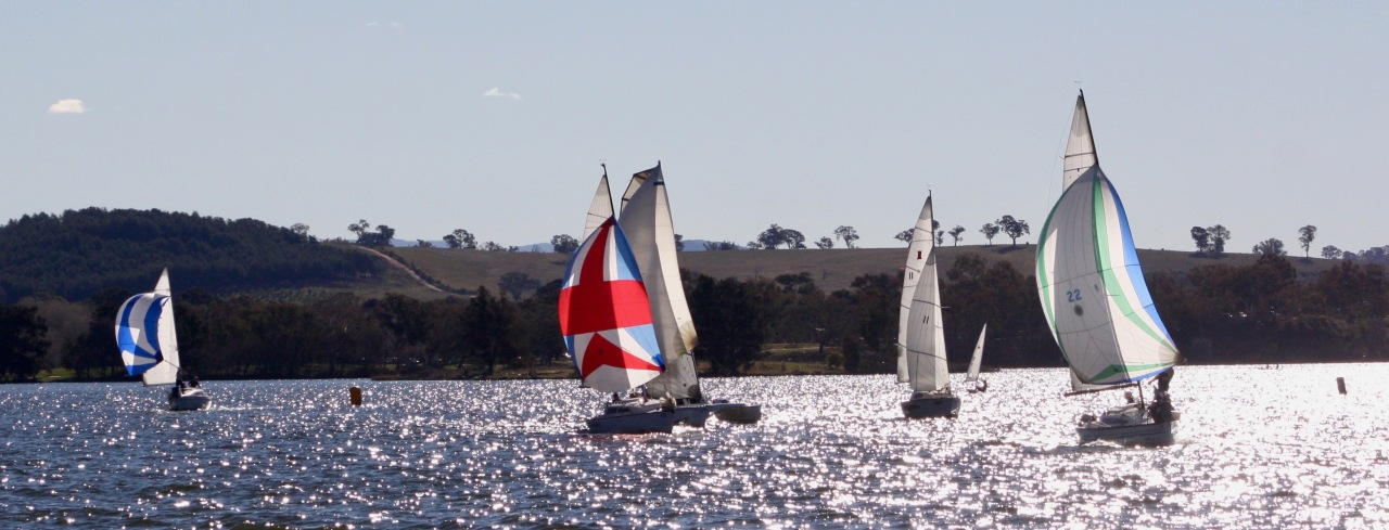 Race 1 Fleet under spinnaker